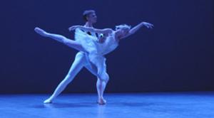 danse lac des cygnes