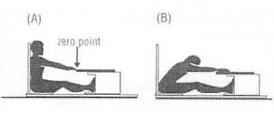 Sit-Reach1